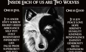 The story of the two wolves: How to better manage your thoughts, feelings and actions